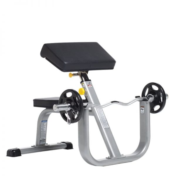 SEATED ARM CURL BENCH