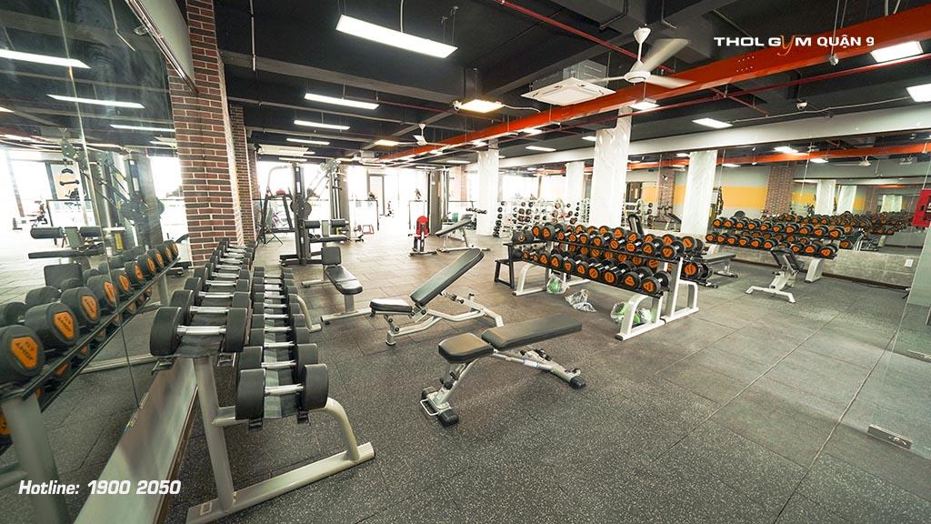 BBT cung cấp đa dạng thiết bị phòng gym